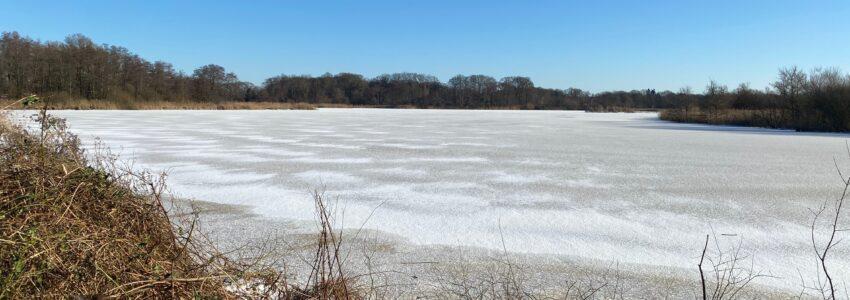 Dagboek: winter, winter en nog eens winter!